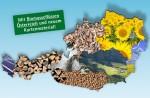 Bioenergie 2015