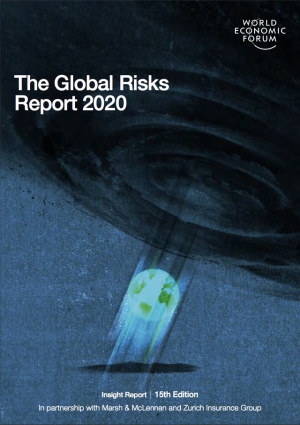 "Cover ""The Global Risks Report"""