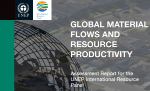 Global Material Flows and Resource Productivity