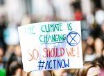 Klimaschützer bei einer Demonstration
