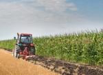 WWF-Studie: Das große Fressen – 1.562 m² für die Ernährung