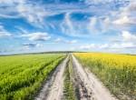 Umweltbundesamt: Artenvielfalt in der Krise