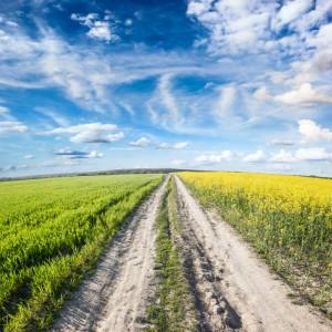 Ihr Weg zum Erreichen der Klimaziele